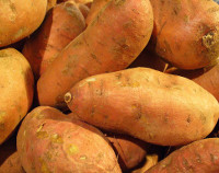 Photograph of Sweetpotatoes